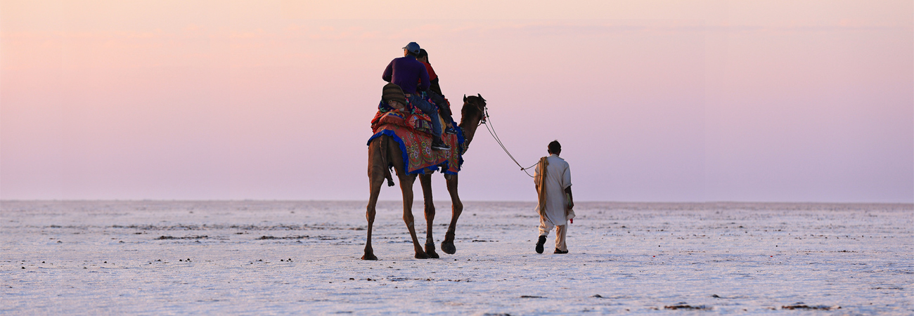 Camel Ride at White Desert