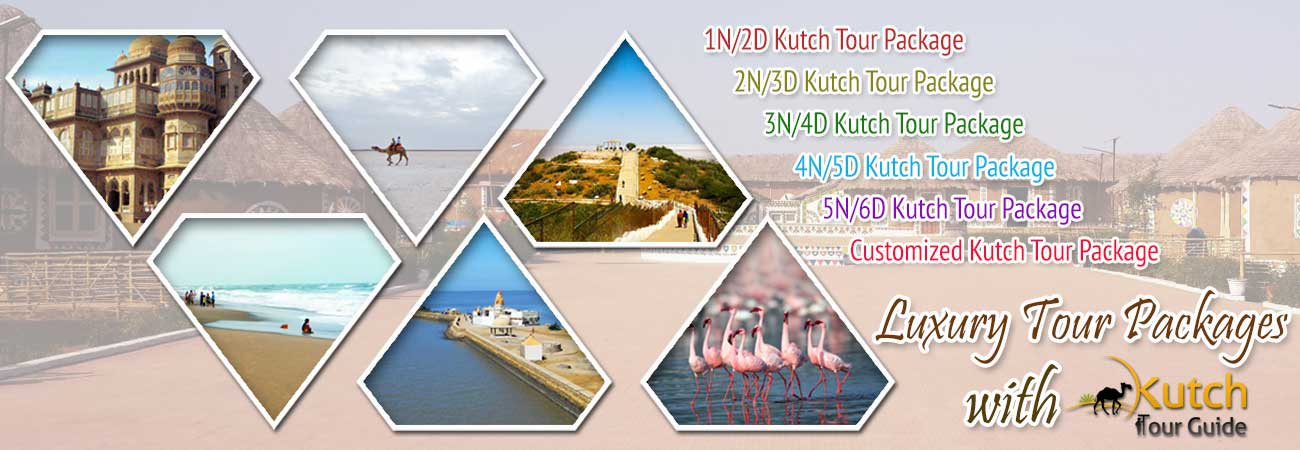 Luxury Tour Packages with Kutch Tour Guide